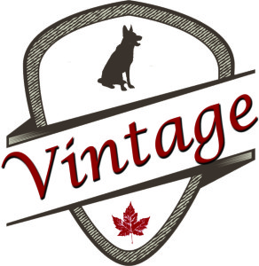Vintage Raw Pet Food